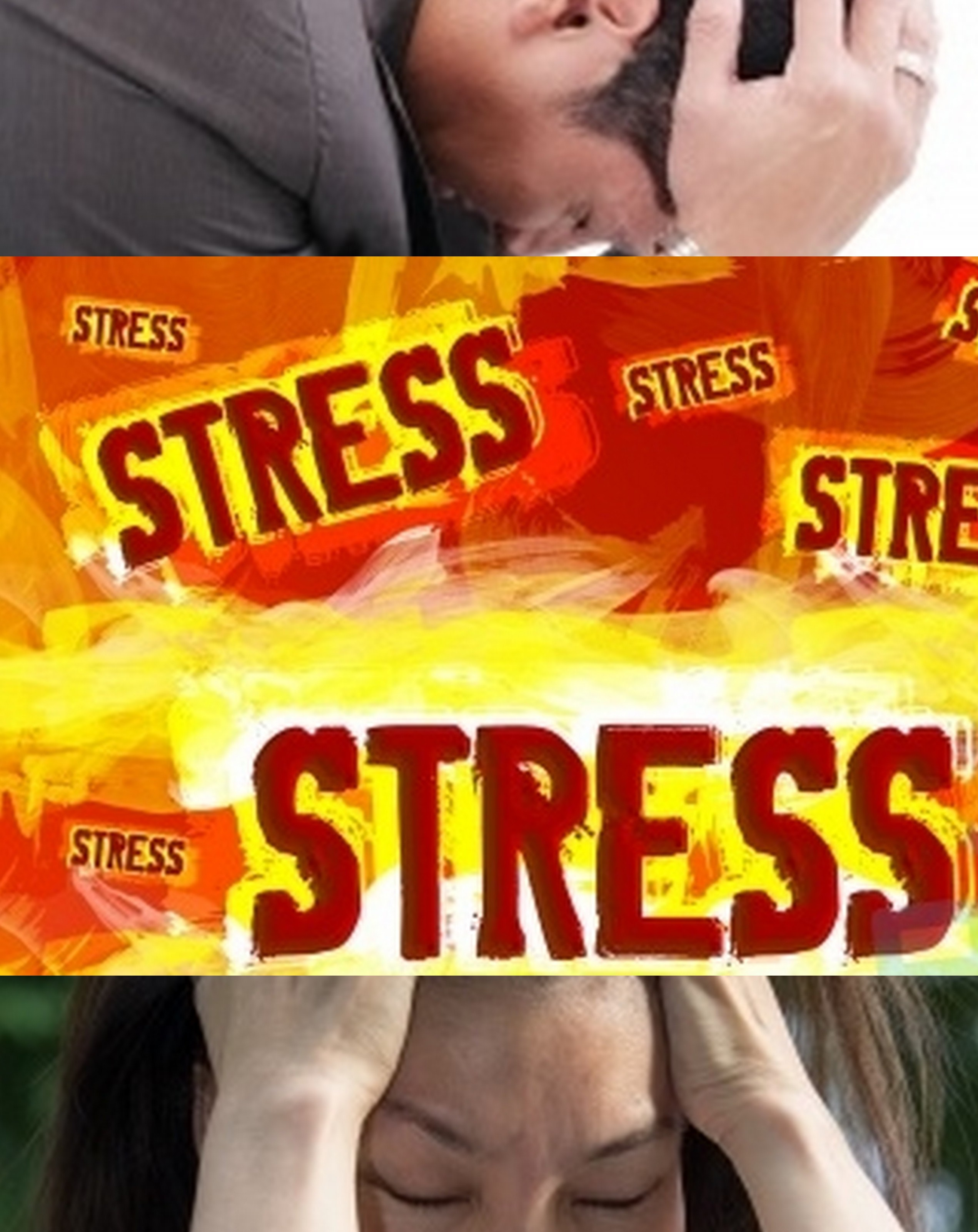 collage stress
